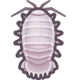 大王具足蟲|集合啦!動物森友會|海洋生物