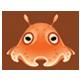 扁面蛸|集合啦!動物森友會|海洋生物