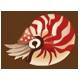 鸚鵡螺|集合啦!動物森友會|海洋生物