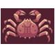 鱈場蟹|集合啦!動物森友會|海洋生物