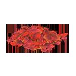 動森 秋季樹果系列 紅色落葉