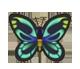 集合啦!動物森友會!昆蟲  亞歷山大鳳蝶