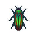 集合啦!動物森友會!昆蟲 吉丁蟲